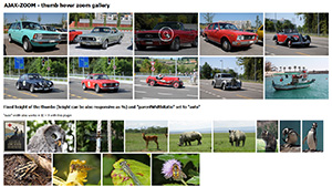 javascript picture zoom